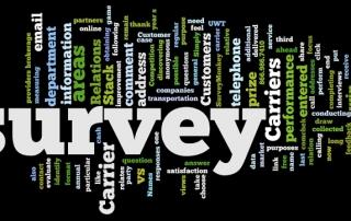 Survey Wordle