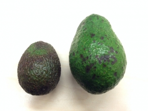 avocado - jumbo vs. reg