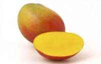 Mango_HADEN