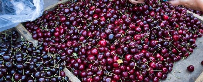 cherrymarket