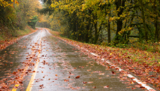 4-reasons-why-fall-is-the-toughest-season-for-refrigerated-carrier-drivers